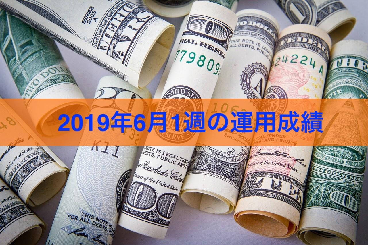 2019円6月1週の運用成績