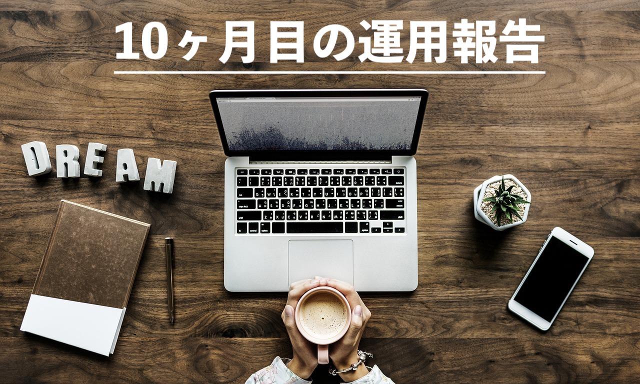ブログ10ヶ月目の運用報告